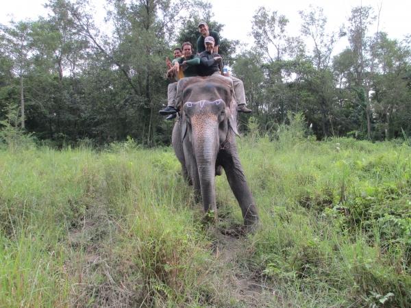 Bardiya National Park 3 nights / 4 Days